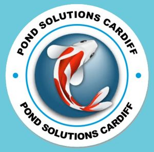 Pond Solutions Cardiff